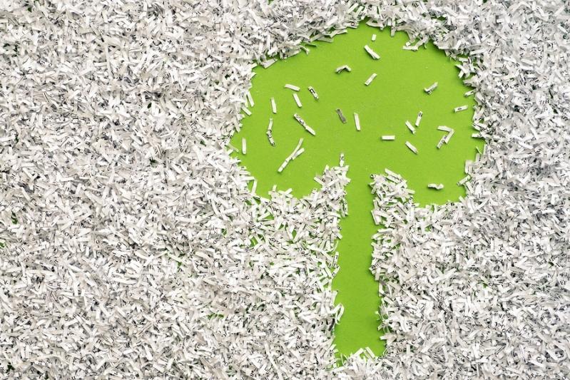 Empresa de Reciclagem de Papel de Empresas Jardim Rosália I - Reciclagem de Papel nas Empresas