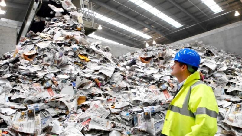 Reciclagem de Papel Laminado São João do Boa Vista - Reciclagem de Papel