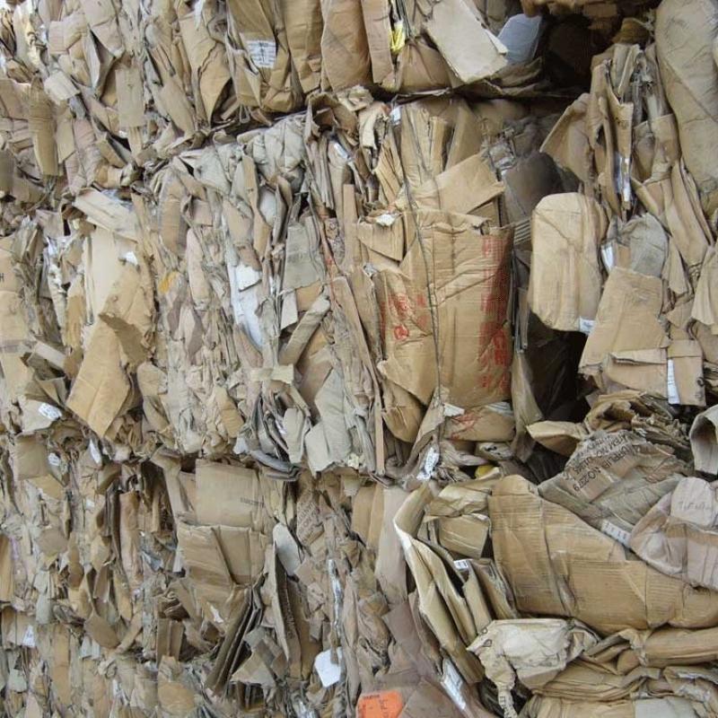 Reciclagem de Papelão Ondulado Reserva da Floresta - Reciclagem de Caixa Papelão