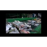 onde encontrar processo de reciclagem de plastico Jardim Rossin