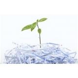 onde encontrar processo de reciclagem do papel picado Vila Itapura